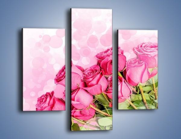 Obraz na płótnie – Słodkie bąbelkowe róże – trzyczęściowy K261W3