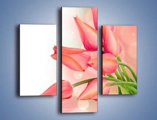 Obraz na płótnie – Dobrze zakręcone tulipany – trzyczęściowy K265W3