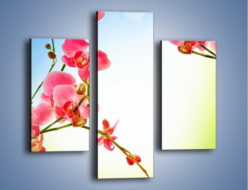 Obraz na płótnie – Akcent kwiatowy – trzyczęściowy K268W3