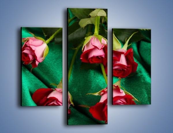 Obraz na płótnie – Krok w stronę róży – trzyczęściowy K269W3