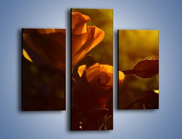 Obraz na płótnie – Wspomnienia w różanym ogrodzie – trzyczęściowy K274W3