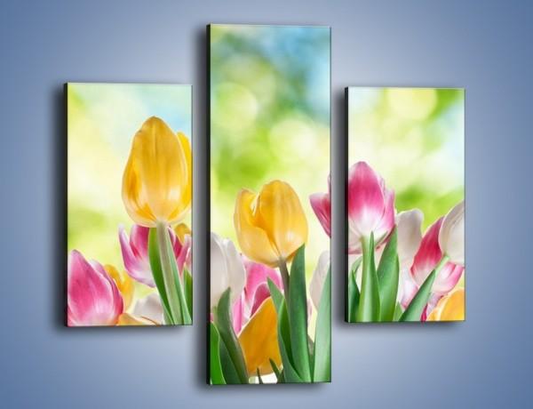 Obraz na płótnie – Tulipany pełne radości – trzyczęściowy K278W3