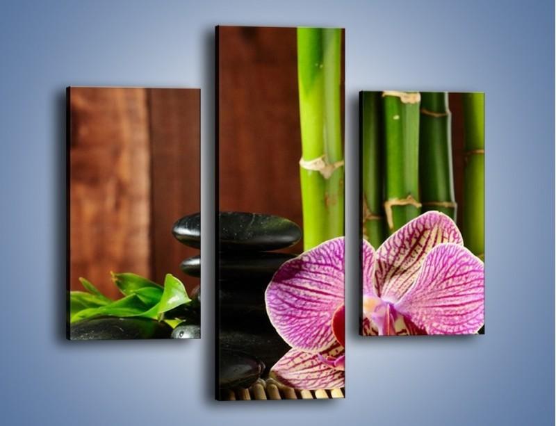 Obraz na płótnie – Bambus storczyk i kamienie – trzyczęściowy K279W3