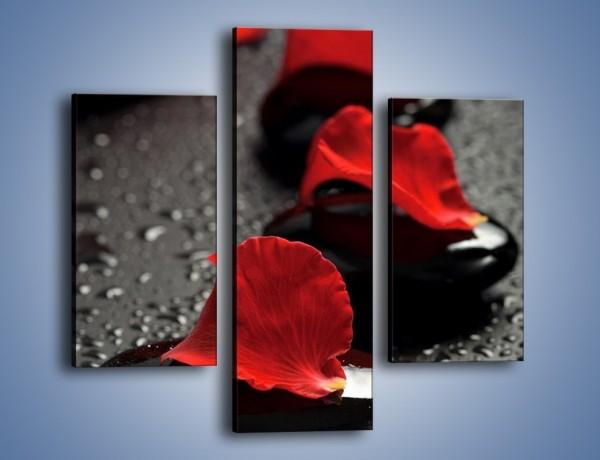 Obraz na płótnie – Krok po kroku do róży – trzyczęściowy K308W3