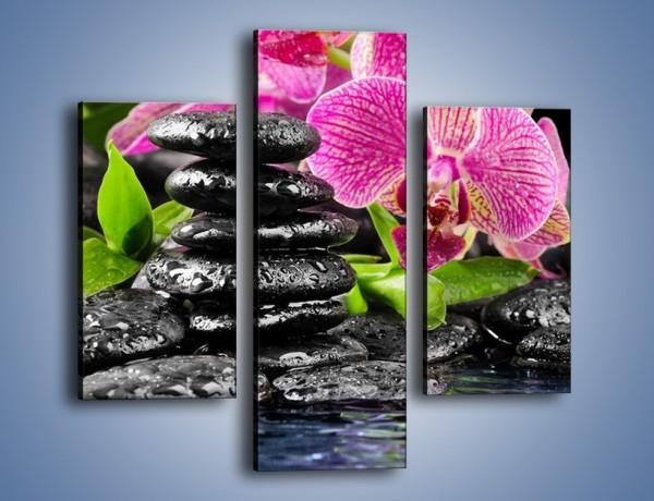 Obraz na płótnie – Kwiat i nie tylko – trzyczęściowy K309W3