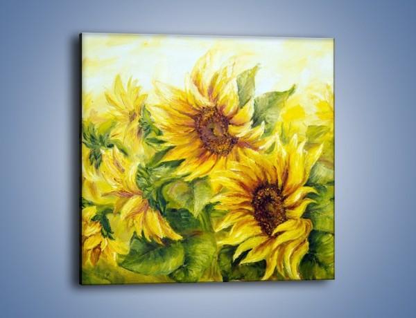 Obraz na płótnie – Słoneczniki schłodzone wiatrem – jednoczęściowy kwadratowy GR470