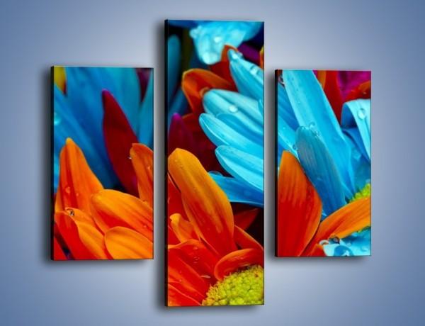 Obraz na płótnie – Kolorowo i kwiatowo – trzyczęściowy K375W3
