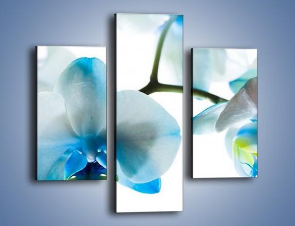 Obraz na płótnie – Turkus w kwiatach – trzyczęściowy K382W3