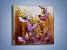 Obraz na płótnie – Delikatne małe motylki – jednoczęściowy kwadratowy GR471