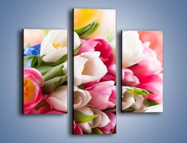Obraz na płótnie – Tulipany w letniej odsłonie – trzyczęściowy K404W3