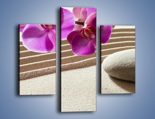 Obraz na płótnie – Kwiat i pustynia – trzyczęściowy K434W3
