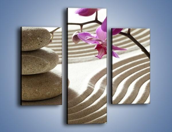 Obraz na płótnie – Kamień piasek i kwiat – trzyczęściowy K435W3