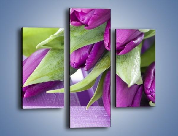 Obraz na płótnie – Tulipany na ogrodowym stole – trzyczęściowy K439W3