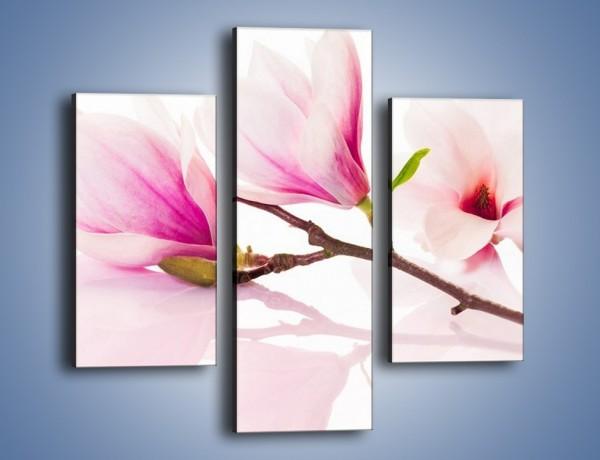 Obraz na płótnie – Lekkość w kwiatach wiśni – trzyczęściowy K485W3