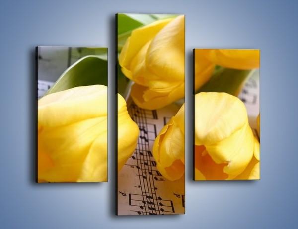 Obraz na płótnie – Tulipanowe nuty – trzyczęściowy K486W3
