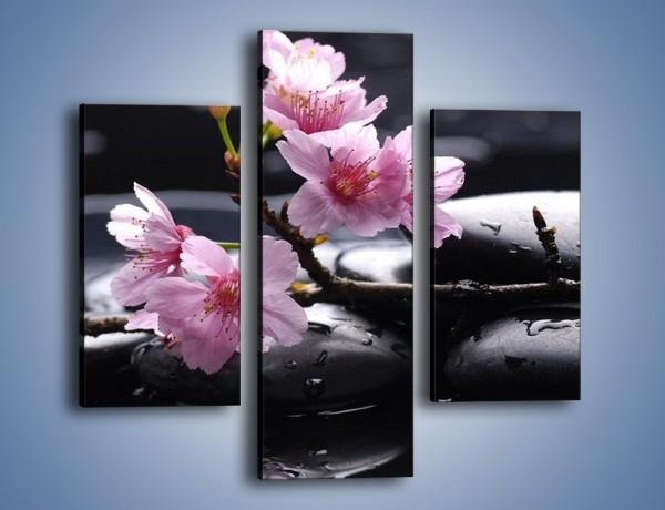 Obraz na płótnie – Gałązka kwiatowa na kamieniach – trzyczęściowy K524W3
