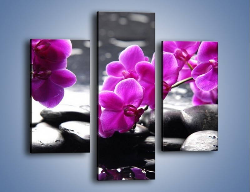 Obraz na płótnie – Dotyk kamienia i storczyka – trzyczęściowy K526W3