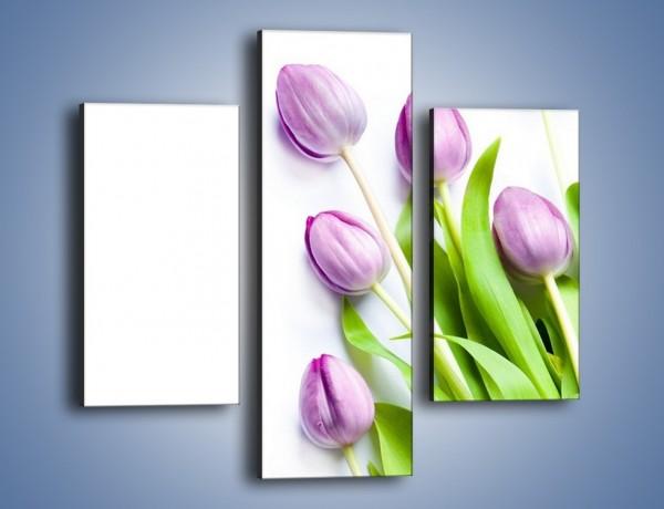 Obraz na płótnie – Fioletowe piękno z tulipanem – trzyczęściowy K548W3