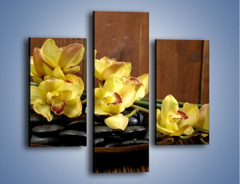Obraz na płótnie – Kwiaty na drewnianym naczyniu – trzyczęściowy K575W3