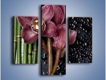 Obraz na płótnie – Bordo kwiata wśród bambusów – trzyczęściowy K576W3