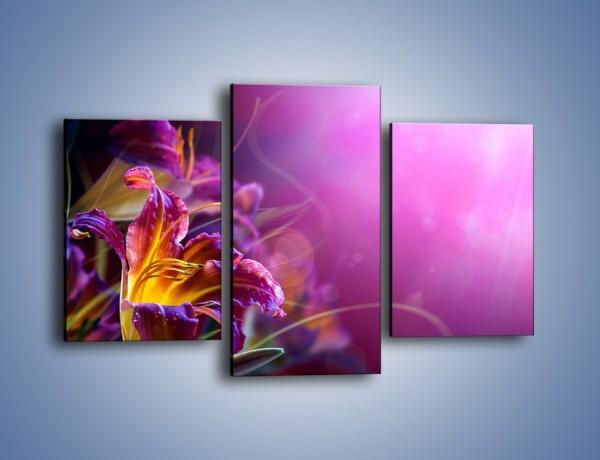 Obraz na płótnie – Zaczarowany kwiat – trzyczęściowy K586W3