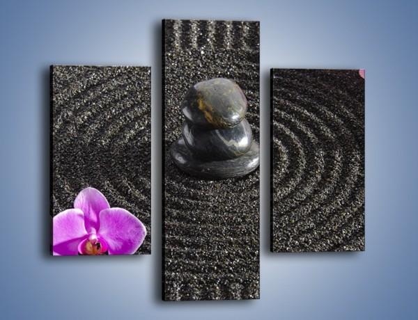Obraz na płótnie – Storczyki w czarnym piasku – trzyczęściowy K644W3