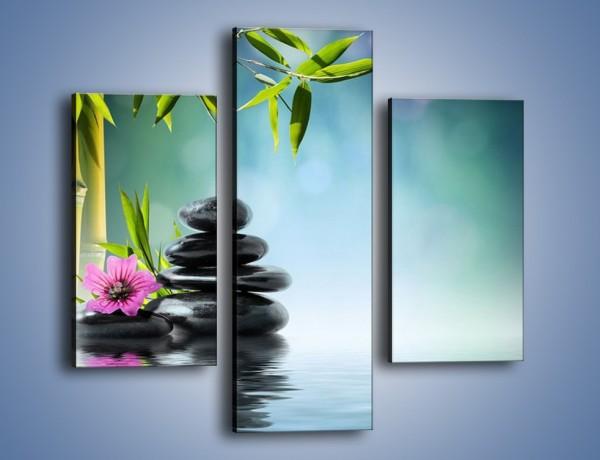 Obraz na płótnie – Wodna opowieść z kwiatem – trzyczęściowy K653W3