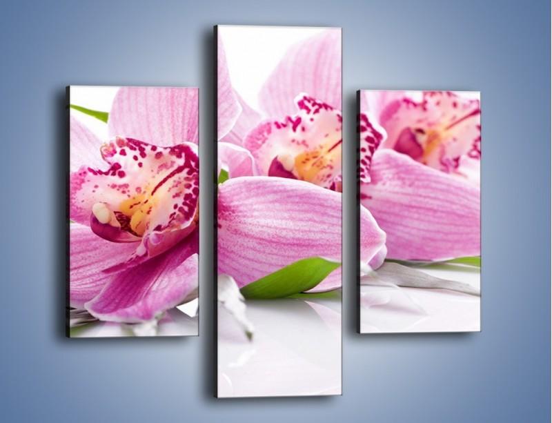 Obraz na płótnie – Biały kwiatowy stół – trzyczęściowy K688W3