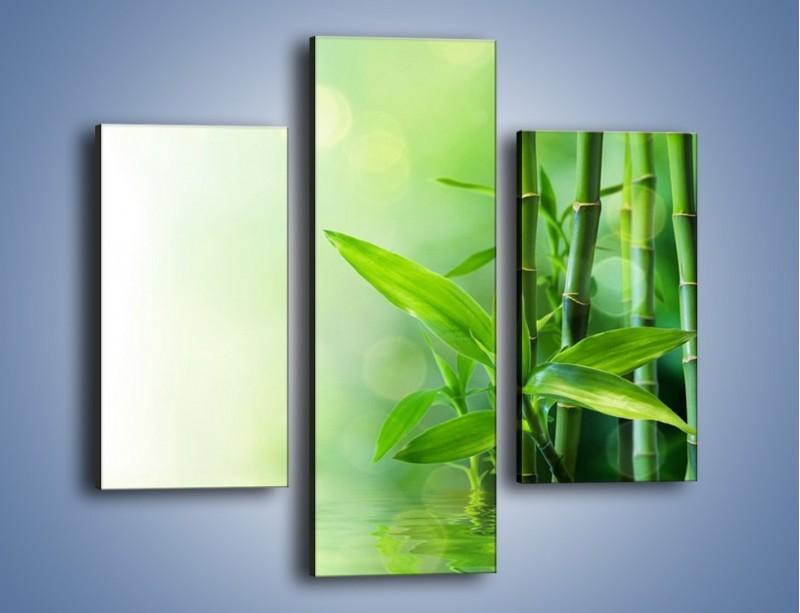 Obraz na płótnie – Bambusowe łodygi w roli głównej – trzyczęściowy K704W3