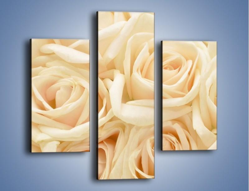 Obraz na płótnie – Bukiet herbacianych róż – trzyczęściowy K710W3