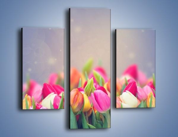 Obraz na płótnie – Tulipany i baśniowy widok – trzyczęściowy K793W3