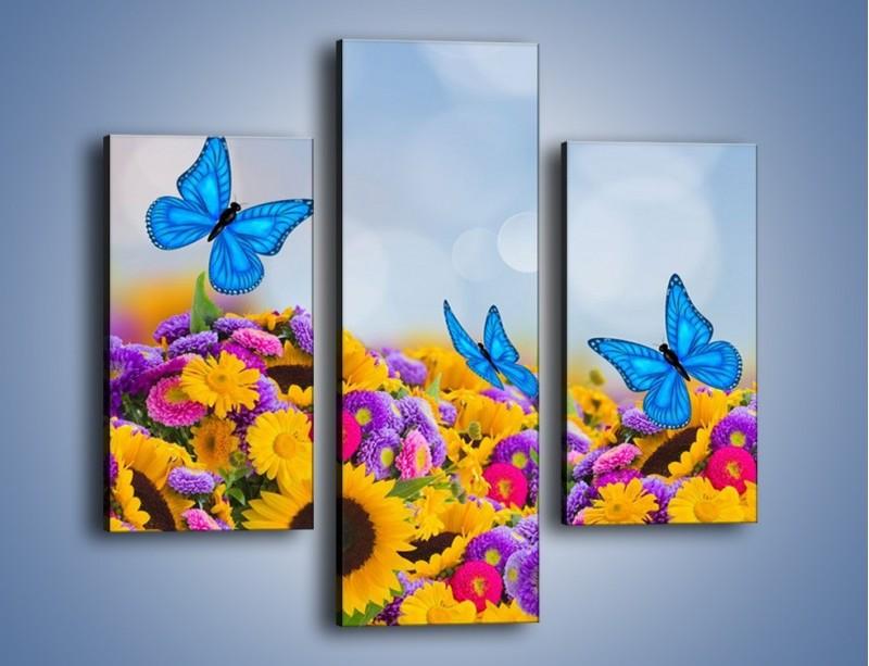 Obraz na płótnie – Bajka o kwiatach i motylach – trzyczęściowy K794W3