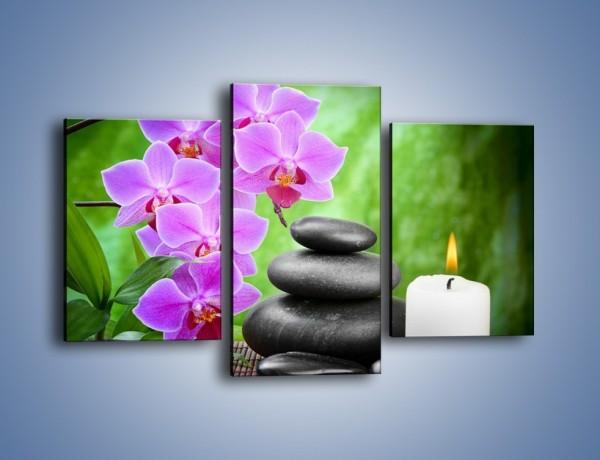 Obraz na płótnie – Wyraźny akcent kwiatowy – trzyczęściowy K810W3