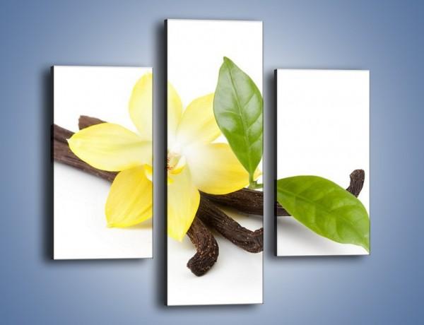 Obraz na płótnie – Samotny kwiat i dodatki – trzyczęściowy K849W3