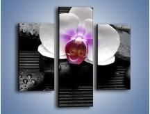Obraz na płótnie – Biały kwiat na ciemnej macie – trzyczęściowy K874W3