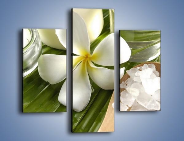 Obraz na płótnie – Sól świece i kwiat – trzyczęściowy K903W3