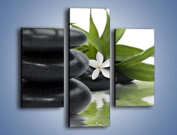 Obraz na płótnie – Schowana kwiatowa delikatność – trzyczęściowy K915W3