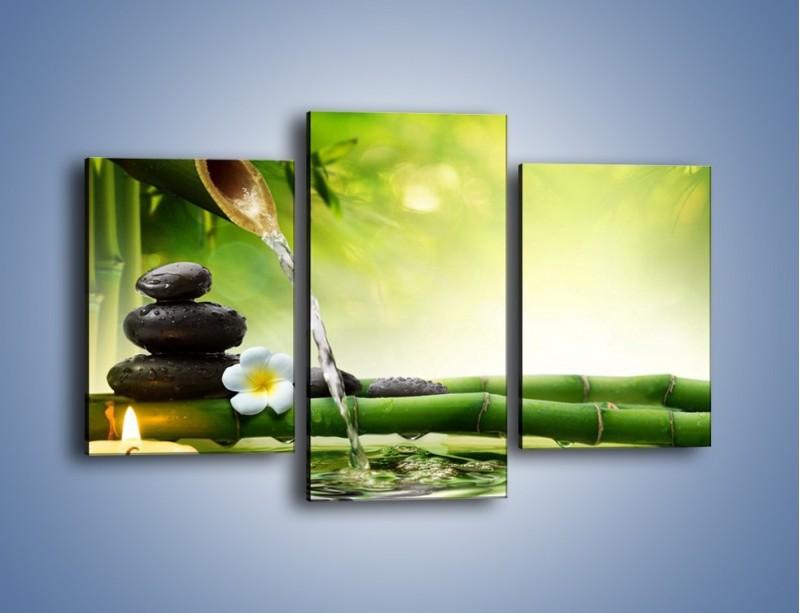 Obraz na płótnie – Bambus i źródło wody – trzyczęściowy K930W3