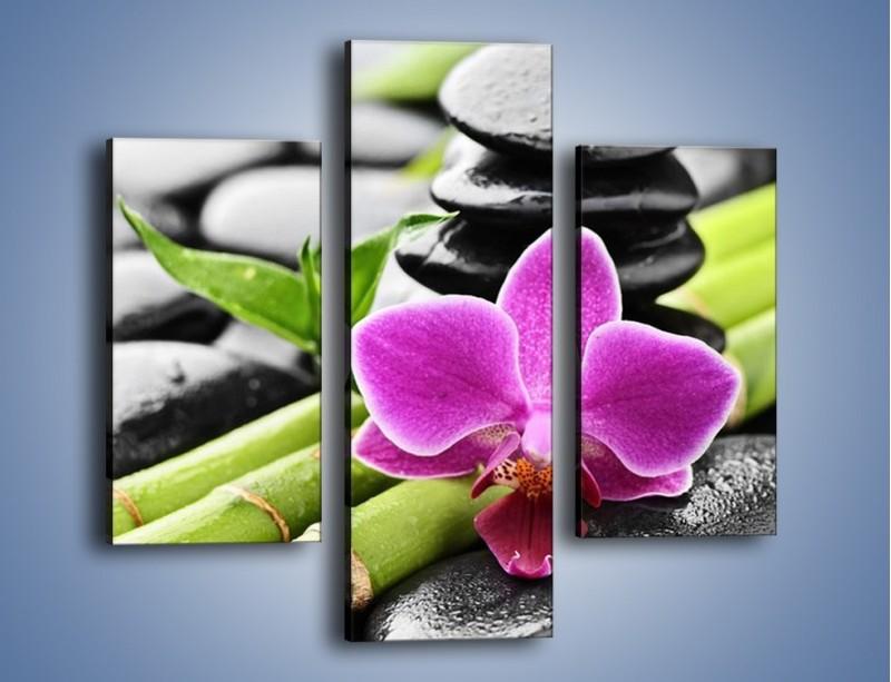 Obraz na płótnie – Idealnie ułożony kwiat – trzyczęściowy K931W3