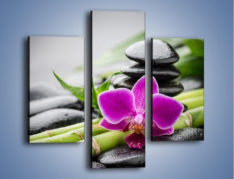 Obraz na płótnie – Bambusowe dodatki z przodu – trzyczęściowy K954W3
