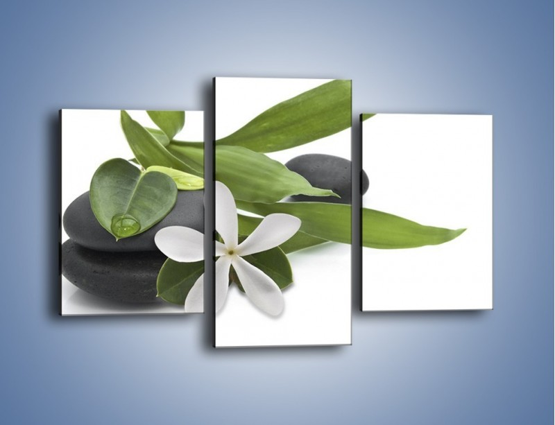 Obraz na płótnie – Artystyczna kompozycja z kwiatem – trzyczęściowy K968W3