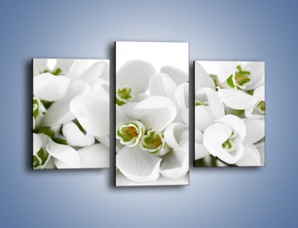 Obraz na płótnie – Niewinne kwiaty z zielonymi oczkami – trzyczęściowy K988W3