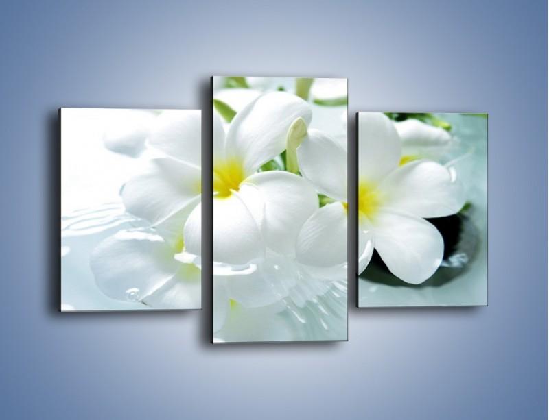Obraz na płótnie – Białe kwiaty w potoku – trzyczęściowy K991W3