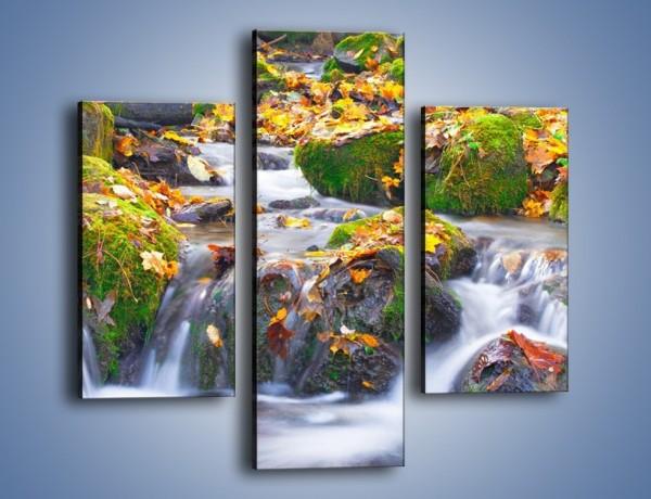 Obraz na płótnie – Liście na wodospadzie – trzyczęściowy KN002W3