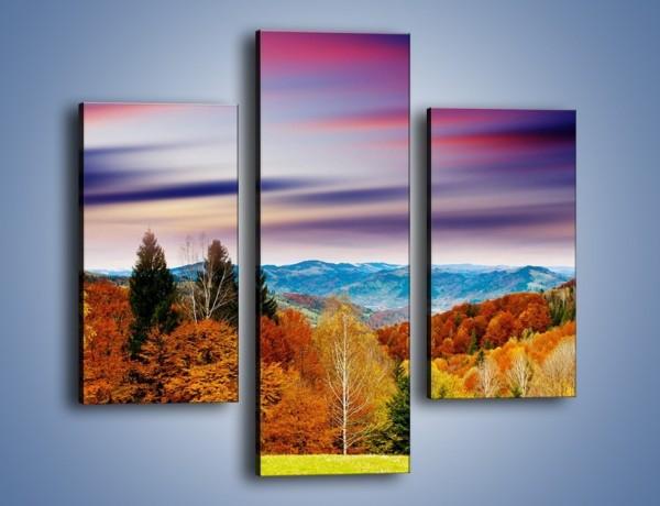 Obraz na płótnie – Drzewa w kolorach jesieni – trzyczęściowy KN099W3