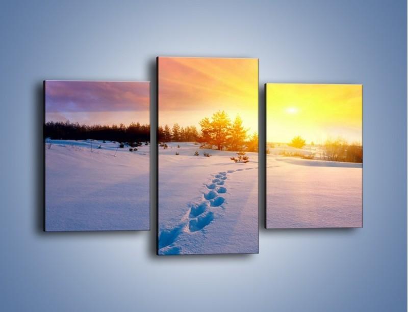 Obraz na płótnie – Ślady na śnieżnym puchu – trzyczęściowy KN1015W3