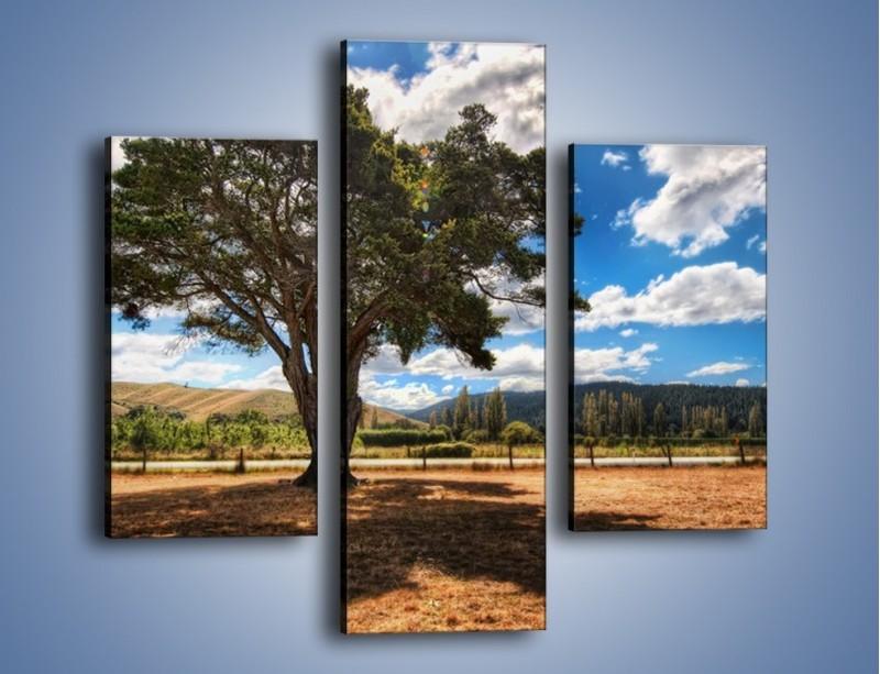 Obraz na płótnie – Cień pod rozłożystym drzewem – trzyczęściowy KN1037W3