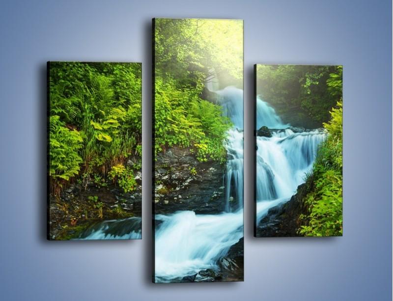 Obraz na płótnie – Spływ wodny i zieleń – trzyczęściowy KN1069W3