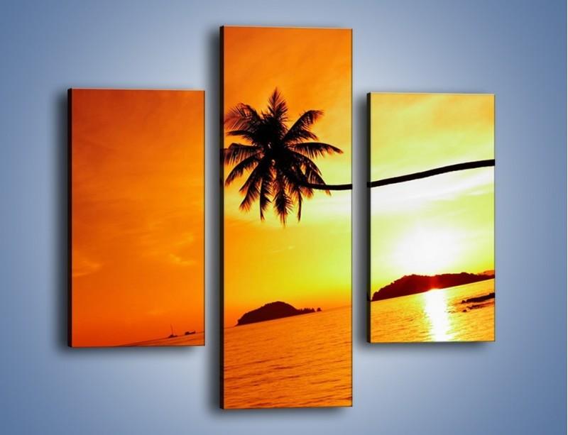 Obraz na płótnie – Palma o zachodzie słońca – trzyczęściowy KN1077W3
