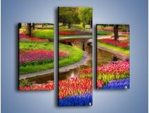Obraz na płótnie – Aleje kolorowych tulipanów – trzyczęściowy KN1079W3